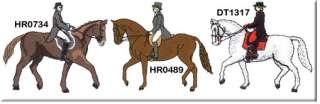 DRESSAGE horse embroidered denim shirt XS XL