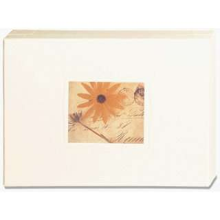Love Letters Stationery Box (9780811825825) Deborah Schenck Books