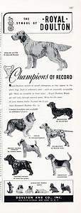 ROYAL DOULTON AD   Champion DOG FIGURINES   1949