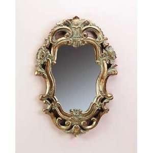 Baroque Design Mirror with Antique Gold Finish