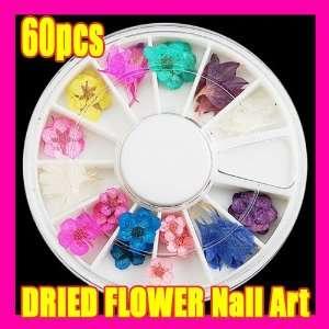 60 X DIY Design Dried Flower Decoration Nail Art 038 Beauty