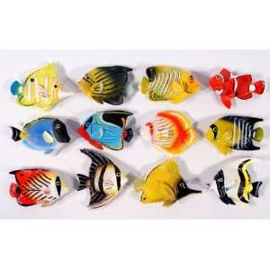 Wholesale Pack Handpainted Assorted Tropical Fish Magnet