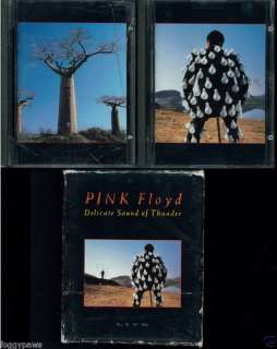 Pink Floyd Delicate Sound of Thunder MiniDisc Mini Disc