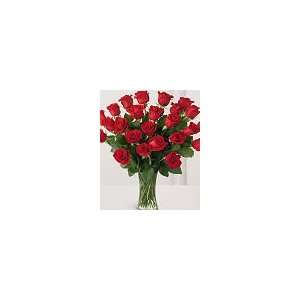 Two Dozen Red Roses   FedEx: Patio, Lawn & Garden