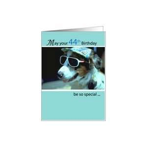 : 44th Birthday Wishes, Dog with Sunglasses and Hat, Humorous, Funny