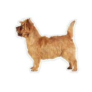 CAIRN TERRIER   Dog Decal   sticker dogs car got