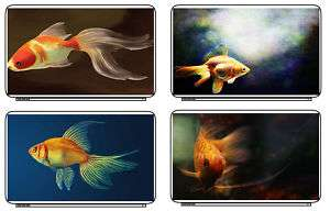 Gold Fish Laptop Netbook Skin Decal Cover Sticker Art