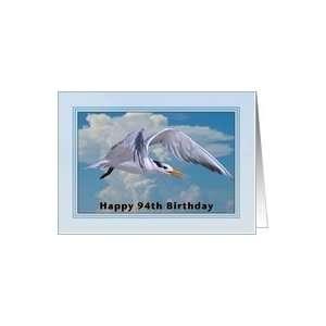 Happy Birthday, 94th, Royal Tern Bird Card Toys & Games
