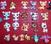 Littlest Pet Shop Lot Animals, Accessories, Houses   Over 100+ pieces