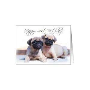 Happy 21st Birthday, Pug Puppies Card: Toys & Games