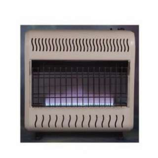 Blue Flame Heater from Emberglow     Model BHW30NLTB