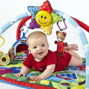 Baby Einstein Caterpillar and Friends Play Gym Baby