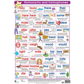 Homonyms & Homophones Poster Teaching Resources 981353