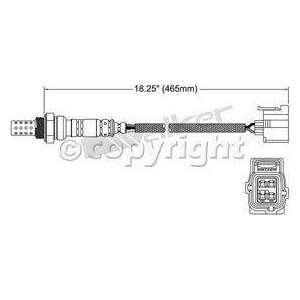 Walker 250 24256 Four Wire Oxygen Sensor Automotive