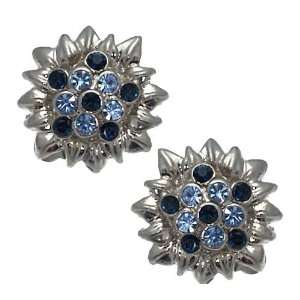 Patina Silver Blue Clip On earrings Jewelry