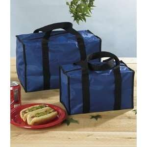 Insulated Tote Bags   Set of 2 (Grocery & Lunch Bag Sizes