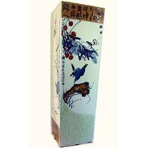 porcelain square vase, hand painted modern bird & f