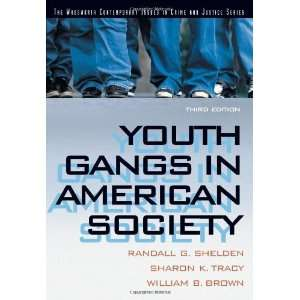 Gangs in American Society (Contemporary Issues in Crime and Justice